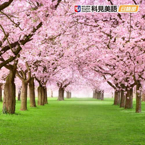 科見日語—兒童日語班