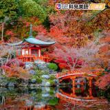 科見日語—成人日語檢定班