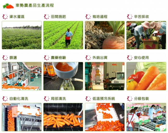 VDS100%紫胡蘿蔔綜合蔬果汁(24瓶/箱)