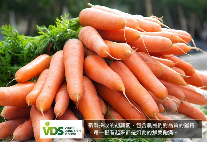 VDS100%胡蘿蔔汁(24瓶/箱)