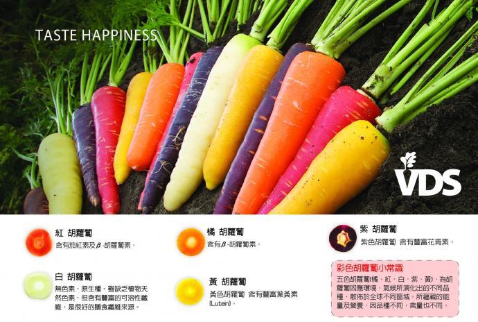 VDS100%胡蘿蔔綜合蔬果汁(24瓶/箱)