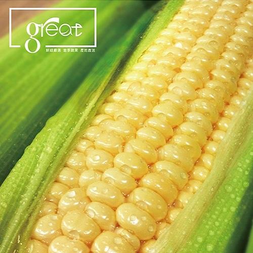 鮮綠 超級甜玉米8組(80支)