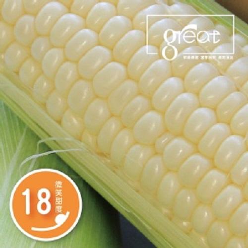 鮮綠 白色水果甜玉米6組(48支)