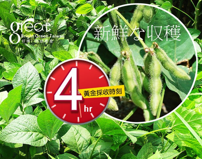 鮮綠 低鹽鮮甜毛豆30包(原味/芋香)
