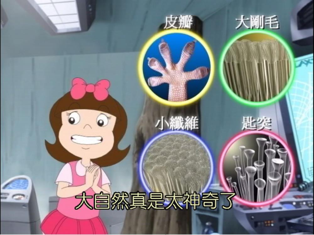 機器人納瑞奇1-10集DVD_中文